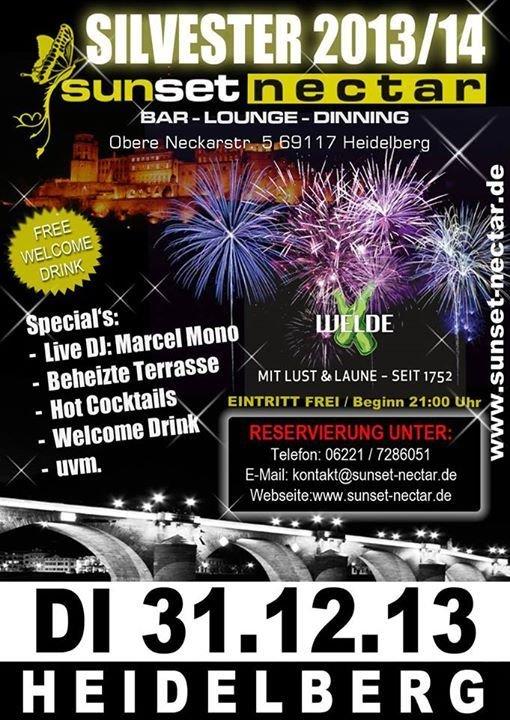 Single party heidelberg 2013