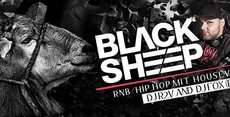 BLACK SHEEP am 28. Okt. [mit Partyaktion]