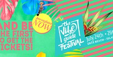 The Vibe Guide Festival 2017